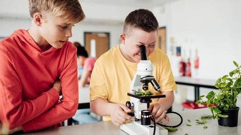 Inklusion an deutschen Schulen, verständlich erklärt
