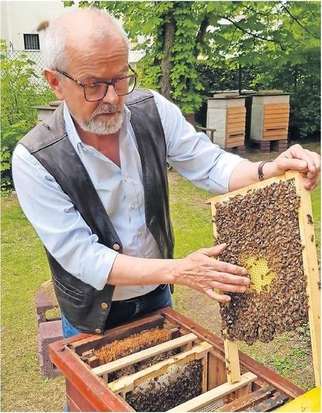 Dieser Mann kämpft sein Leben lang für die Honigbiene