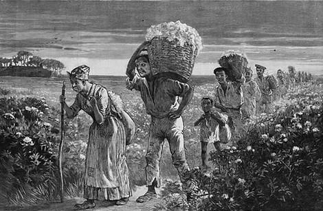 Die Sklaverei und die Entstehung des amerikanischen Kapitalismus