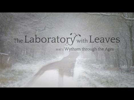 """Wytham Woods - ein """"Laboratorium mit Blättern"""" der University of Oxford"""