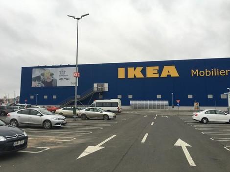 Kahlschlag in den Karpaten: Harvard, Ikea und das kriminelle Holzgeschäft in Rumänien