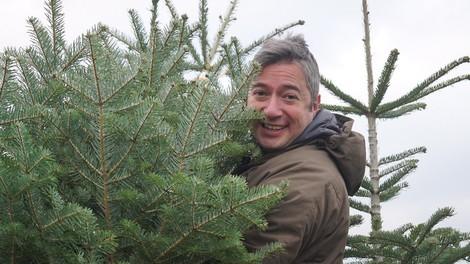 Der andere Deutsche und sein türkischer Weihnachtsbaum