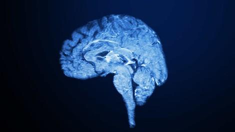 Wie schädlich ist Multitasking – fürs Gehirn und die Karriere?