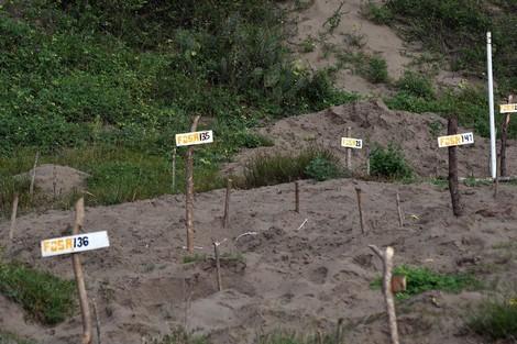Wie der Drogenkrieg Mexiko zum Land der Massengräber machte