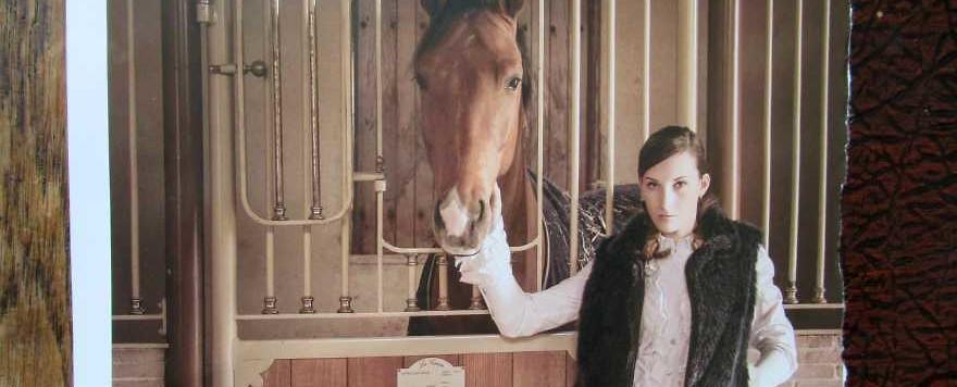 Equiva Magazin – Die Must-Haves des Sommers für dich und dein Pferd
