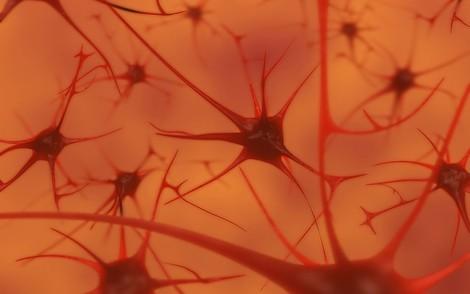 Die verblüffende Ähnlichkeit von Hirn und Computer — Es gibt sie nicht.