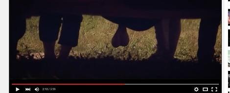 Der estnische Penis...
