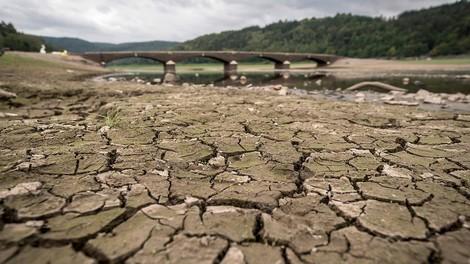 Dauerstress durch Klimawandel