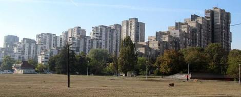 Belgrad 2: Laufen in Belgrad