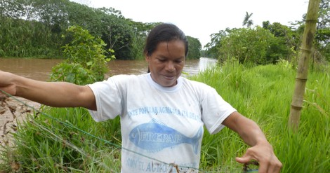 Amazonas-Fischer als Bürgerwissenschaftler