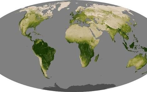 Ergrünt die Erde durch CO2-Düngung - oder doch nicht?
