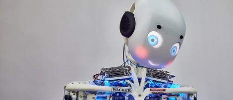 Leben wir irgendwann als Roboter weiter?