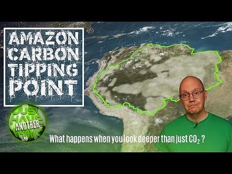 CO2 ist nicht Alles: Amazonasbecken wirkt klimaerwärmend