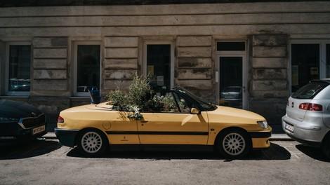 Grünzeug statt Parkplätze: das Cabrio-Beet und mehr Ideen
