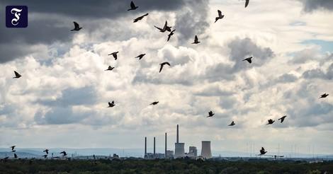 """Weltweites Ende der Kohleverstromung """"in Sichtweite"""""""