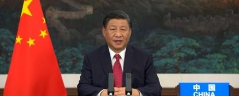 """Xi: """"Wir bauen keine Kohlekraftwerke mehr außerhalb Chinas"""""""